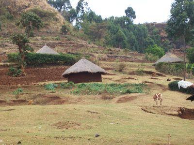 Rural houses of sebei.jpg